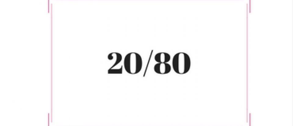 חוק 20/80 פארטו טל שפיר